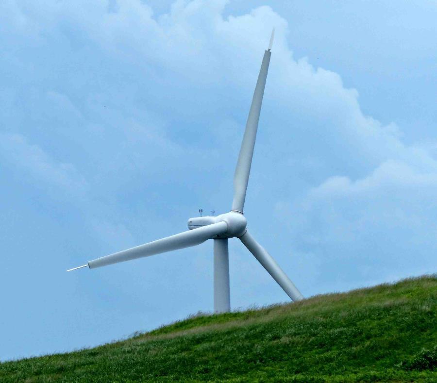 Donald Trump le ha atribuido diversos males a la energía eólica como parte de su cruzada para recuperar el uso del carbón y otros combustibles fósiles. (GFR Media) (semisquare-x3)