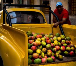 Cuba hoy: la pugna entre el racismo y la inclusión