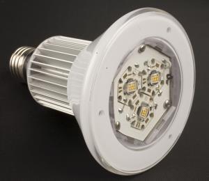 Legislador propone instalar alumbrado LED en áreas públicas de Puerto Rico