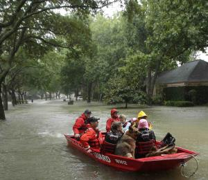 Las primeras lecciones del huracán Harvey