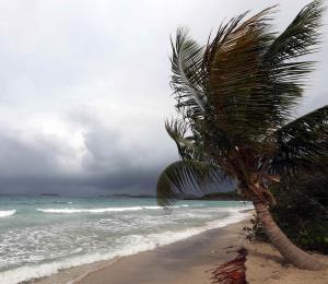 Comercio exterior y desarrollo para Puerto Rico