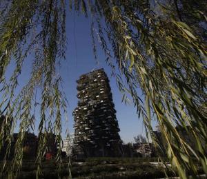 Milán quiere sembrar tres millones de árboles para el 2030