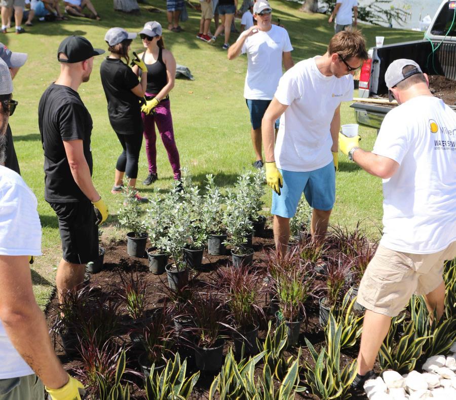 Crean jardín de lluvia en el estuario de la laguna del Condado (semisquare-x3)