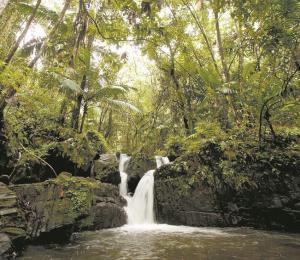Infraestructura verde para proteger el agua