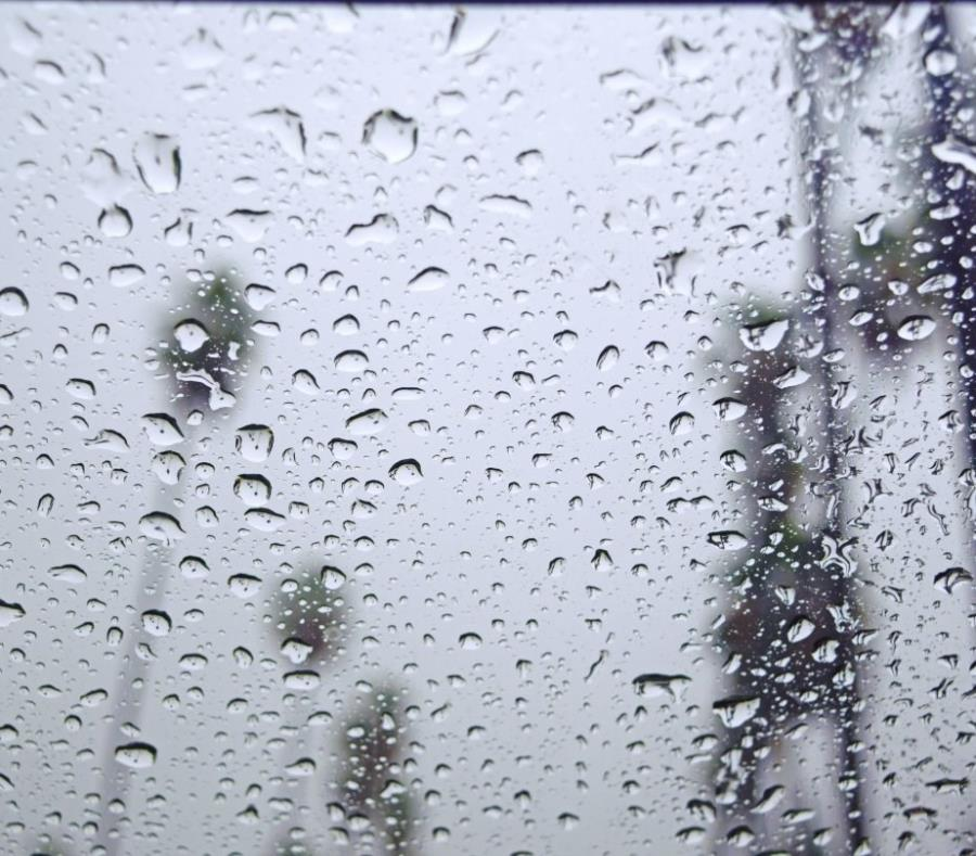 La humedad se mantendrá durante el día en un 75%. (semisquare-x3)