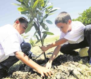 La educación en derechos humanos: agenda pendiente en Puerto Rico