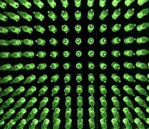 Heineken se une a Grupo Guayacán para incentivar el empresarismo