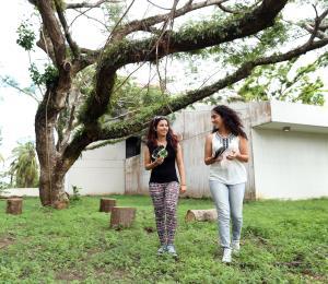 Iniciativa para reforestar a Puerto Rico