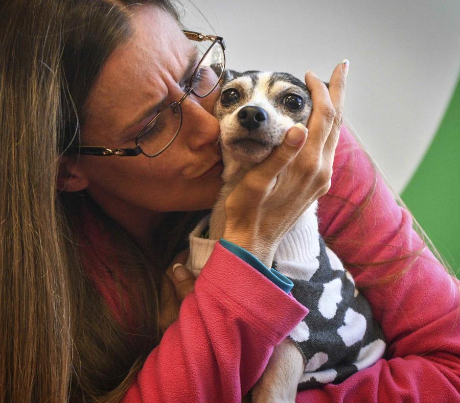 Mujer encuentra a su perrita extraviada después de 12 años