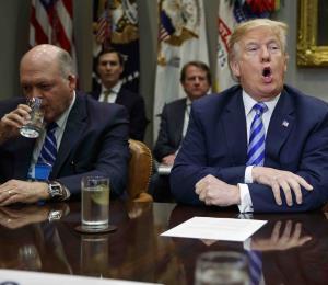 Trump pidió a empresas construir más vehículos en Estados Unidos