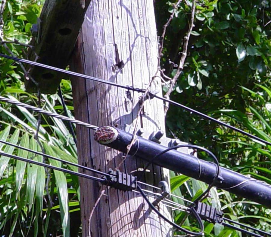 Los cables son cortados para extraer el cobre. (GFR Media) (semisquare-x3)