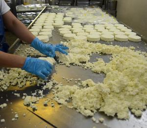 Productores de quesos piden equidad de precios