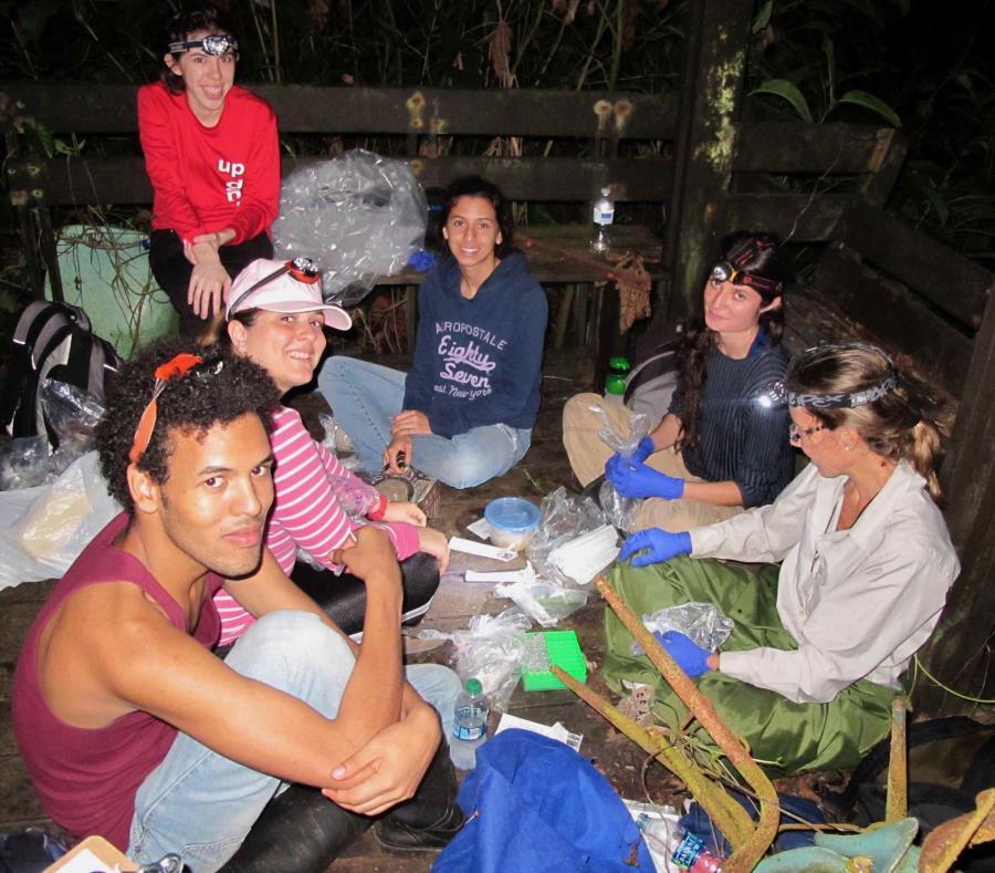 La doctora Patricia Burrowes junto con estudiantes de la UPR en Río Piedras que participaron en el estudio. (Suministrada) (semisquare-x3)
