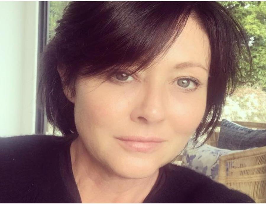 La actriz se hizo famosa por interpretar el papel de Brenda Walsh en la serie juvenil.  ( Instagram /@theshando) (semisquare-x3)