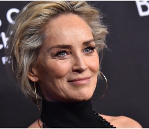 "Sharon Stone recreó la famosa escena de ""Basic Instinct"" a sus 61 años"