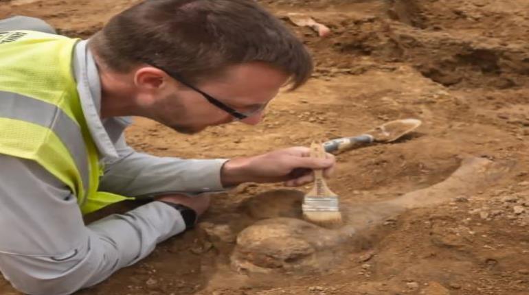 Los fósiles están incrustados en una capa de roca de entre 66 y 68 millones de años. (Captura/KDVR) (semisquare-x3)