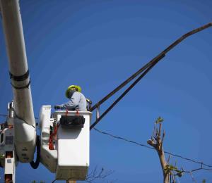 Cambiar alambres en la AEE