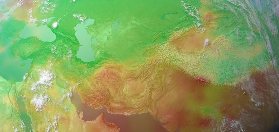 El estudio utiliza la monitorización en satélites para medir la fluorescencia de la clorofila inducida por el sol, un subproducto de la fotosíntesis en las hojas. (horizontal-x3)