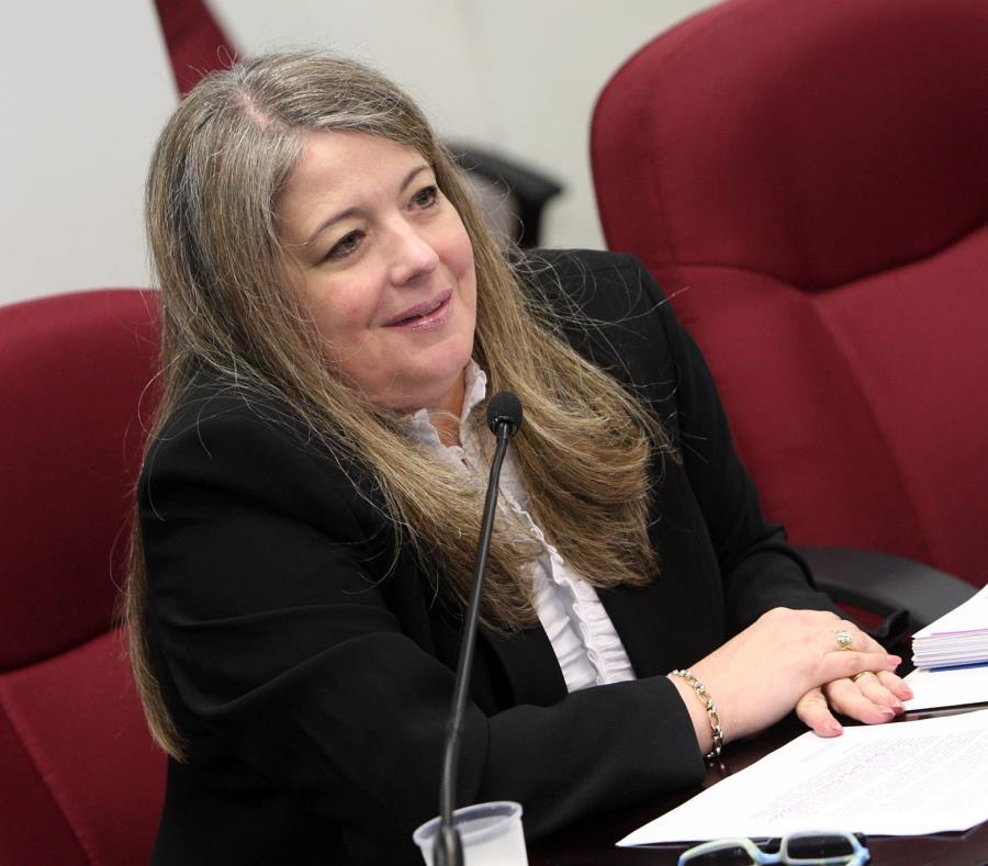Iraelia Pernas, presidenta de Acodese, precisó que entre los casos que aún están en el tintero figuran los reclamos de municipios, agencias de gobierno, grandes comercios y condominios. (semisquare-x3)