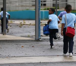 Las escuelas alianza y los vales educativos
