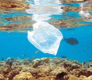 A combatir la contaminación en nuestras aguas