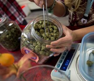 Patente la necesidad de cuentas en la industria del cannabis