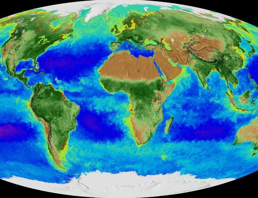 ¿Cómo ocurrió la mayor extinción en la historia de la Tierra? (semisquare-x3)