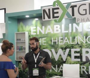 Industria del cannabis medicinal encara el reto de conseguir más pacientes en Puerto Rico