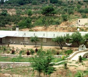 Hallan 565 brasileños sometidos a esclavitud en haciendas de una secta