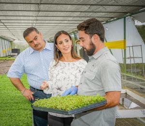 Crece TrueLeaf Farms con incentivos de Guayacán y Heineken