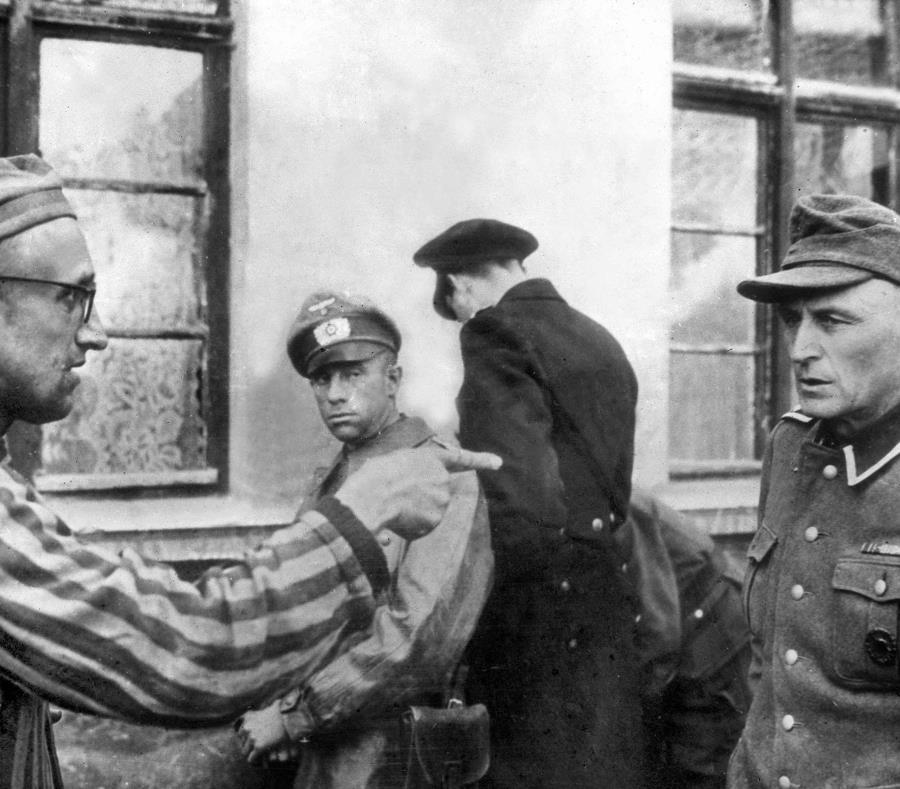 De los opositores al régimen nazi que serán enterrados, no quedan más que 300 tejidos dispuestos en recipientes de laboratorio (semisquare-x3)