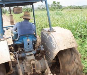 El coto a incentivos del agro