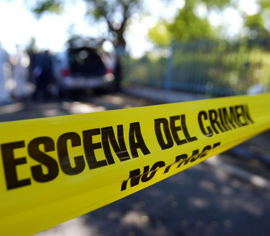Los homicidios se reportaron en Ponce, Bayamón, Toa Alta, Caguas, Aibonito y Mayagüez (semisquare-x3)