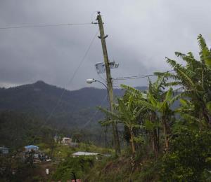Nelson Canals tras el huracán y el olvido