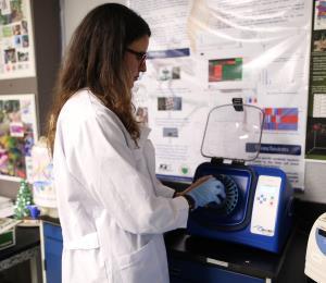 Un estudio ayudaría a la detección temprana del VPH