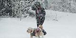 Tormentas de nieve hacen estragos en la costa este de Estados Unidos