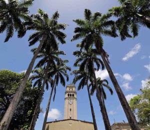 Apremiante una nueva Ley Universitaria