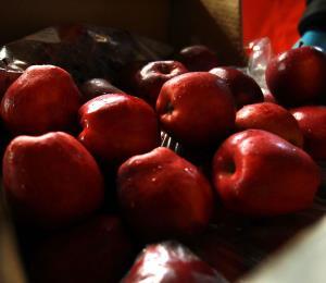 El caso de las 15,000 manzanas copa la atención en Cuba