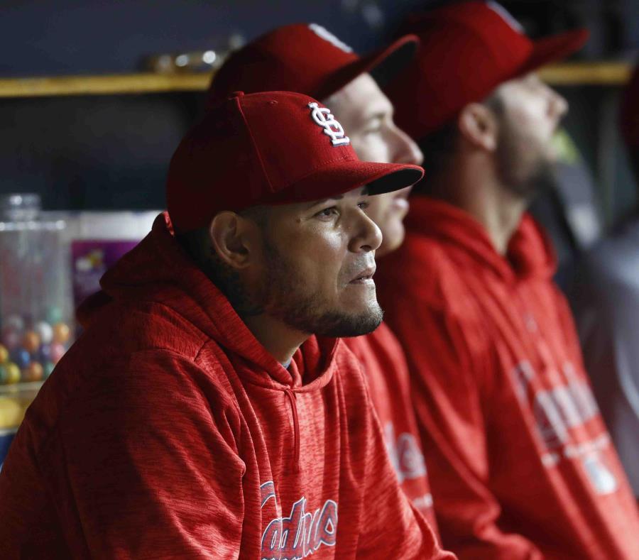 Yadier Molina observa un partido desde el dugout de los Cardenales el pasado viernes. (AP) (semisquare-x3)