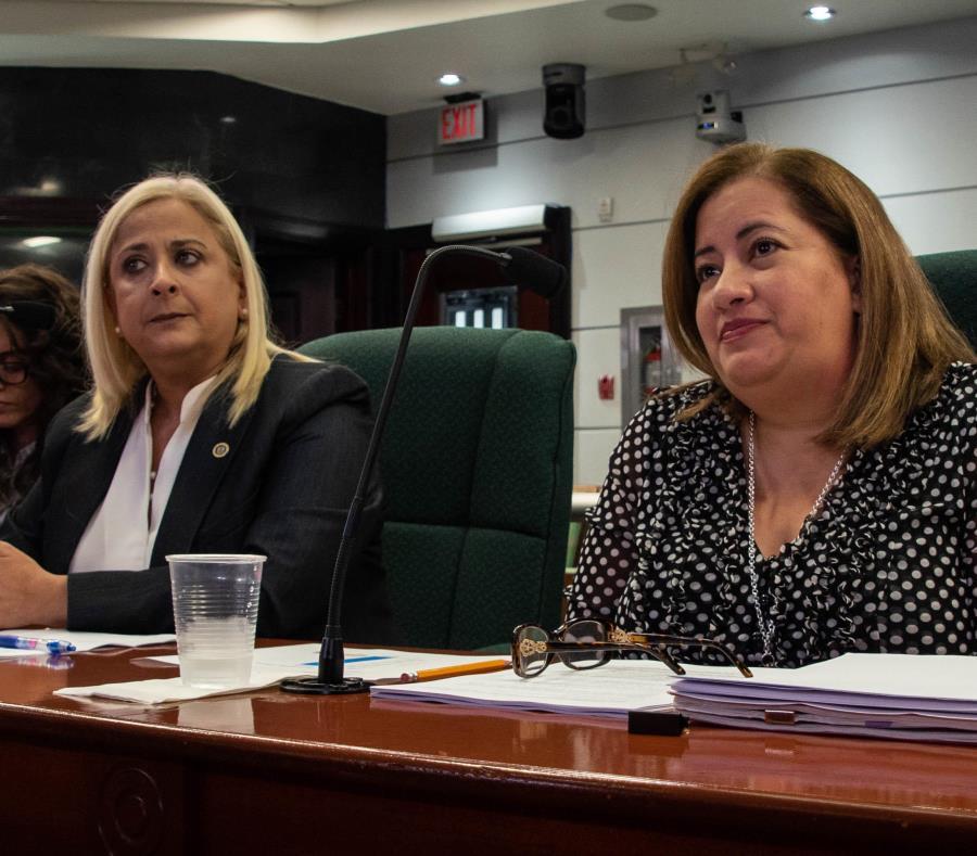 Ángela Dávila, de ASES, y Luz E. Cruz Romero, de Medicaid, comparecieron ayer a una vista pública de la Cámara de Representantes (semisquare-x3)