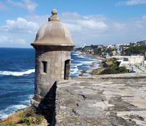 Los semilleros de esperanza en Puerto Rico