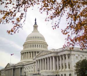 El Senado federal y Puerto Rico