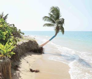 Deslinde de riesgo y privatización de nuestras playas