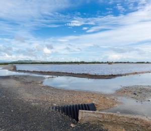 Evalúan proyecto de mitigación para Las Salinas de Cabo Rojo