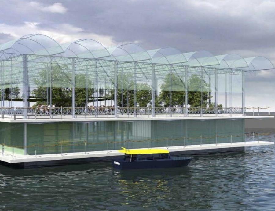 Inauguran una granja flotante capaz de resistir huracanes (semisquare-x3)