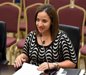 Comisionado electoral del PPD denuncia que Llerandi se niega a firmar licencia de la comisionada alterna