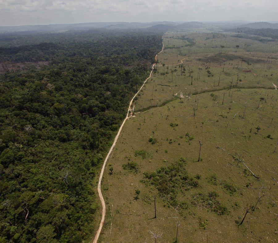 En esta fotografía del 15 de septiembre de 2009 se muestra una zona deforestada cerca del estado norteño de Para, en Brasil. (AP/Andre Penner, Archivo) (semisquare-x3)