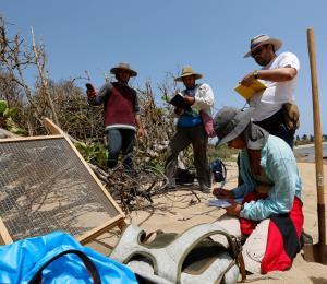 Científicos documentan restos indígenas en las costas