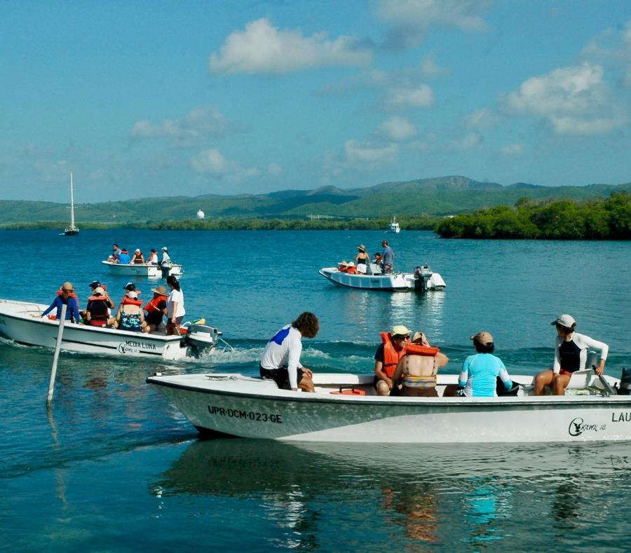 Como parte de las actividades de la reunión, se hará una limpieza de arrecifes de coral y cayos de manglar en La Parguera. (semisquare-x3)