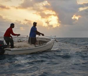 El reto de fortalecer la pesca en Puerto Rico